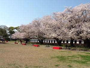 舞鶴公園①
